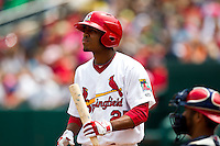 Oscar Taveras (25) of the Springfield Cardinals at bat during a game against the Arkansas Travelers at Hammons Field on May 8, 2012 in Springfield, Missouri. (David Welker/ Four Seam Images)