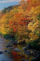 Swift River<br />   from Albany Covered Bridge<br /> White Mountain National Forest<br /> New Hampshire,  New England