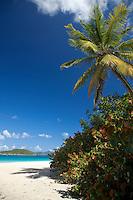 Cinnamon Bay.Virgin Islands National Park.St. John.U.S. Virgin Islands