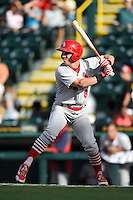 Palm Beach Cardinals outfielder Charlie Tilson (8) at bat during a game against the Bradenton Marauders on June 23, 2014 at McKechnie Field in Bradenton, Florida.  Bradenton defeated Palm Beach 11-6.  (Mike Janes/Four Seam Images)