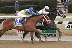 Revolutionary (#2) with Javier Castellano splits horses to win the 133rd running of the Grade 3  Withers Stakes for 3-year olds, going 1 1/16 on the inner dirt, at Aqueduct Racetrack.  Trainer Todd Pletcher.  Owner Winstar Farms (( Special transmission of horses in the Top 25 for points for the 2013 KentuckyDerby ))