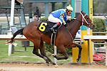 01-24-20 Smarty Jones Stakes Oaklawn