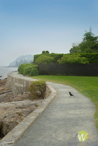 Beach Walk path with crow, Bar Harbor, ME