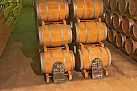 The barrel aging cellar, full of barriques  - Chateau Belgrave, Haut-Medoc, Grand Crus Classe 1855