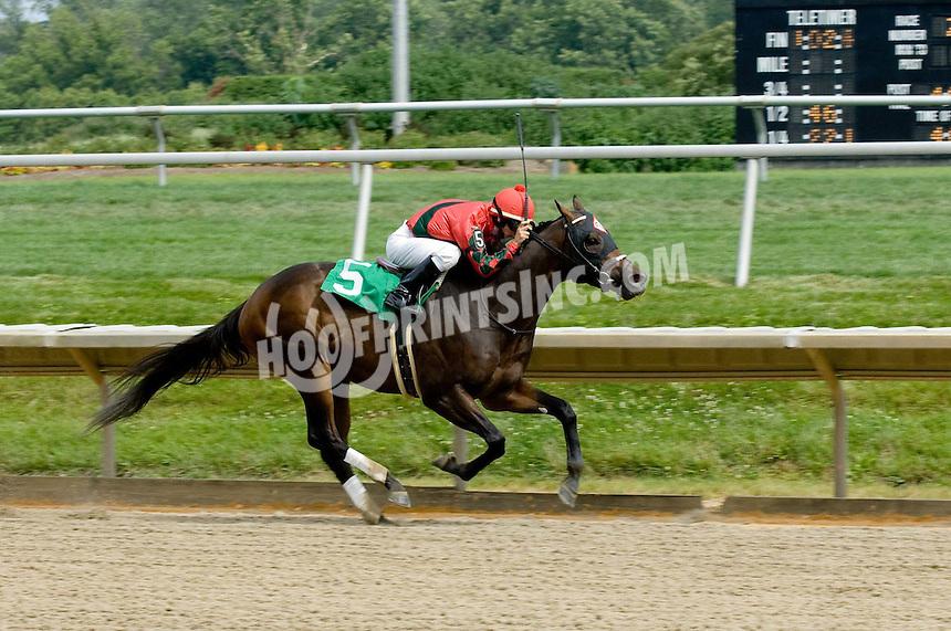 Central City winning at Delaware Park on 7/4/09