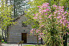 May 4, 2018; Log Chapel spring 2018 (Photo by Matt Cashore/University of Notre Dame)