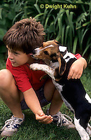 SH24-032z Beagle Puppy with child, PRA