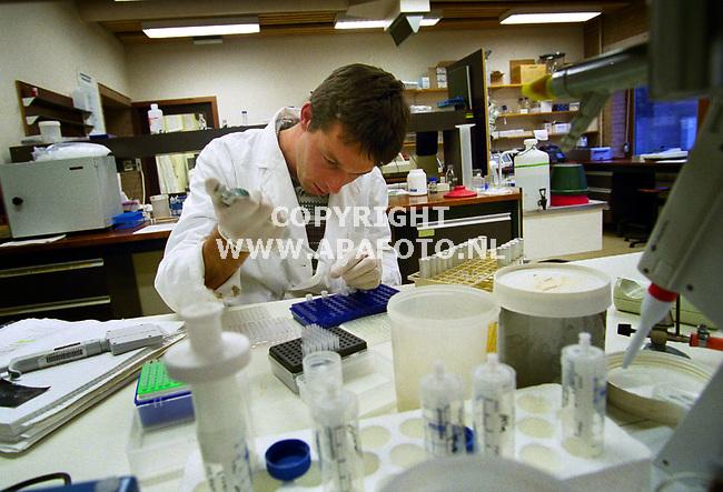 Wageningen,181199  Foto:Koos Groenewold (APA-Foto)<br />Een medewerker is in het laboratorium bezig met het onderzoek.<br /><br />lv3/4 oogst47 laboratorium  apa/koos groenewold