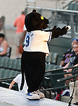 Fort Worth Cats Mascot, Dodger, in action during the American Association of Independant Professional Baseball game between the Grand Prairie AirHogs and the Fort Worth Cats at the historic LaGrave Baseball Field in Fort Worth, Tx. Fort Worth defeats Grand Prairie 8 to 7...