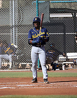 Zavier Warren - 2020 AIL Brewers (Bill Mitchell)