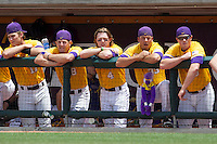LSU Tigers Jared Foster (17), Casey Yocom (28), Raph Rhymes (4), Kevin Berry (33) and Taylor Butler (4) in the dugout against the Texas A&M Aggies in the NCAA Southeastern Conference baseball game on May 11, 2013 at Blue Bell Park in College Station, Texas. LSU defeated Texas A&M 2-1 in extra innings to capture the SEC West Championship. (Andrew Woolley/Four Seam Images).
