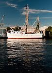 In the harbor at Tarpon Springs, Florida, USA.