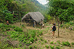 The footpath to Rosita's simple hut in the Sierra Maesta mountains.<br /> Her thatched roof homet covers an open air kitchen in front, and an enclosed bedroom in back.