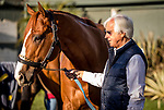 ARCADIA, CA - APRIL 21: Kentucky Derby favorite, Justify with trainer Bob Baffert at Santa Anita Park on April 21, 2018 in Arcadia, California. (Photo by Alex Evers/Eclipse Sportswire/Getty Images)