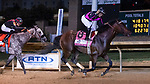August 27, 2021: Art Collector #8, ridden by jockey Luis Saez draw away from defending champion Sleepy Eyes Todd ridden by jockey Miguel Silva to win the Grade 2 Charles Town Classic at Charles Town Race Course in Charles Town West Virginia on August 27th, 2021. Tim Sudduth/Eclipse Sportswire/CSM