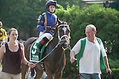 Sacristy and Rosie Napravnik head to he post for the Acorn.