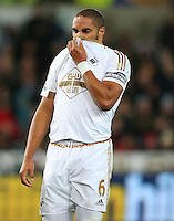 Ashley Williams of Swansea City shows a look of dejection during the Barclays Premier League match between Swansea City and West Ham United played at The Liberty Stadium, Swansea on 20th December 2015