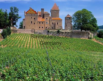 Frankreich, Burgund, Suedburgund, Saone & Loire, Weingut und Schloss Pierreclos | France, Burgundy, South-Burgundy, Saone & Loire, wine growing estate and castle Pierreclos