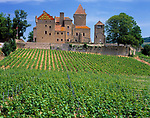 Frankreich, Burgund, Suedburgund, Saone & Loire, Weingut und Schloss Pierreclos | France, Burgundy, South-Burgundy, Saone & Loire, wine growing estate and castle Pierreclos