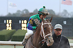 February 22, 2015: Jockey Mike Smith aboard Far Right after winning the South West Stakes (Grade III) at Oaklawn Park in Hot Springs, AR. Justin Manning/ESW/CSM