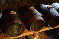 Weinbaumuseum in Madalena auf der Insel Pico, Azoren, Portugal