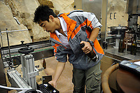 A young man working at winery of Treaty Port Vineyards in Penglai, Shandong province, China. <br /> 06 Nov 2010