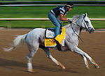 Hansen , trained by Michael Maker and to be ridden by Ramon Dominguez, works out in preparation for the 138th Kentucky Derby at Churchill Downs in Louisville, Kentucky on May 3, 2012