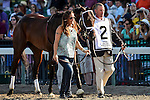 August 02 2015: Competitive Edge, trained by Todd Pletcher, walks to the paddock before the Haskell Invitational on Haskell Day at Monmouth Park in Oceanport, NJ. Bob Mayberger/ESW/CSM