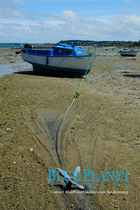 Small motorized wood boat anchored on a sandy beach at low tide off the city of Carantec in the Bay of Morlaix, Atlantic Ocean, North of Brittany, North of France, Europe