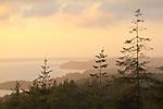 TNC Washington Coast