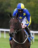 Julie Johnston ridden by Jack Mitchell goes down to the start of The Irish Stallion Farms EBF Fillies' Nursery Stakes       during Horse Racing at Salisbury Racecourse on 11th September 2020