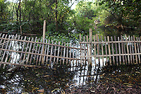 """A flooded fence in a mangrove forest in the north-west of Jakarta. According to the Jakarta Post, """"it is now only a matter of time before mangroves are totally erased from the map of Jakarta — a victim of unbridled urbanization and industrialization programs initiated by the government""""."""