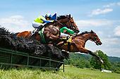 5th David Semmes Memorial Hurdle Stakes - Snap Decision