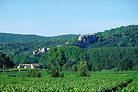 Churches, fortifications and other stone buildings cling to ridge running up wooded hillside. Vineyard in foreground and farm buildings in middle distance. LaRoque sur Ceze Provence France.