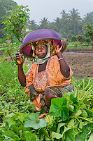 AWright_Tanz_010229.jpg<br /> Tanzania<br /> Rehema Aux keeps her head dry from the rain in Morogoro while she works in her backyard garden. Rehema grows produce for her family to eat and sells the surplus in a nearby market. BRAC staff ensure she has seeds, fertilizer, tools and training needed for a successful crop.