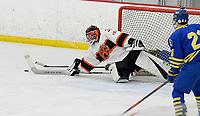 Madison West at Verona Wisconsin High School Hockey 1/3/20