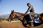 OCT 27:Breeders' Cup Juvenile  entrant Dennis' Moment, trained by Dale L. Romans, at Santa Anita Park in Arcadia, California on Oct 27, 2019. Evers/Eclipse Sportswire/Breeders' Cup