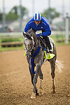 LOUISVILLE, KY - MAY 05: Mohaymen  gallops at Churchill Downs in preparation for the Kentucky Derby on May 05, 2016 in Louisville, Kentucky.(Photo by Alex Evers/Eclipse Sportswire/Getty Images)