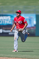 Cincinnati Reds second baseman Alejo Lopez (55) jogs off the field between innings during an Instructional League game against the Kansas City Royals on October 2, 2017 at Surprise Stadium in Surprise, Arizona. (Zachary Lucy/Four Seam Images)
