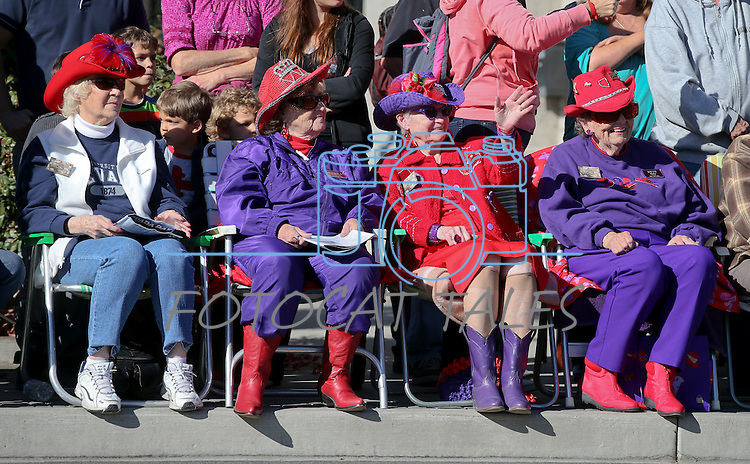 Spectators watch the 75th annual Nevada Day parade in Carson City, Nev., on Saturday, Oct. 26, 2013.<br /> Photo by Cathleen Allison