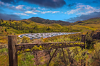 Fine Art Print Mountain and Lake Scenic of spots of Lichens growing on a fence rail just in front of Spotted Lake in the south Okanagan Valley of British Columbia, Canada.