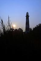 Lighthouse Chincoteague Assateague Island Virginia Maryland Eastern Shore
