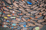 Boats laid out like petals with life saving rings on them by Azim Khan Ronnie