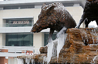 Ice forms Thursday, February 11, 2021, on the trotters of the Wild Band of Razorbacks monument on the northeast corner of Donald W. Reynolds Razorback Stadium on the campus of the University of Arkansas in Fayetteville. Check out nwaonline.com/210212Daily/ and nwadg.com/photos for a photo gallery. The National Weather forecast for today in the Northwest Arkansas area is for mostly cloudy and a high near 29 degrees. Check out nwaonline.com/210212Daily/ and nwadg.com/photos for a photo gallery.<br /> (NWA Democrat-Gazette/David Gottschalk)