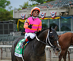July 3, 2021: Max Player, ridden by Ricardo Santana Jr., wins the 2021 running of the G2 Suburban S. at Belmont Park in Elmont, NY. Sophie Shore/ESW/CSM