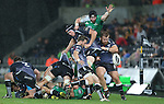 Ospreys forwards Lloyd Peers and Dmitri Arhip hold up Connacht replacement Andrew Browne to allow scrum half Martin Roberts time to kick the ball upfield.<br /> Guiness Pro12<br /> Ospreys v Connacht<br /> Liberty Stadium<br /> 31.10.14<br /> ©Steve Pope-SPORTINGWALES