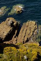 Rocky sea cliffs, Brittany, France.