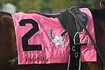 April 10, 2015: #2 Untapable silks in the Apple Blossom Handicap at Oaklawn Park in Hot Springs, AR. Justin Manning/ESW/CSM