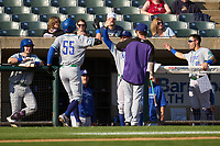 Hartford Yard Goats Michael Toglia (55) high fives teammates and coaches after hitting a home run during a game against the Somerset Patriots on September 11, 2021 at TD Bank Ballpark in Bridgewater, New Jersey.  (Mike Janes/Four Seam Images)