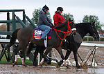 October 28, 2015:  Private Zone, trained by Jorge Navarro, and owned by Good Friends Stable, is entered in the Breeder's Cup TwinSpires Sprint.  Candice Chavez/ESW/CSM